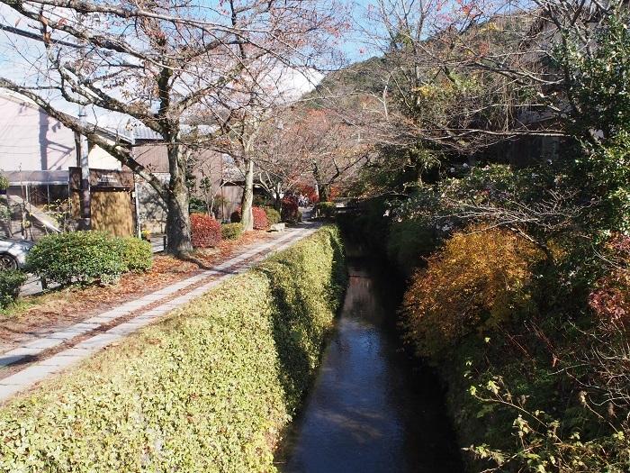 R1_1京都6