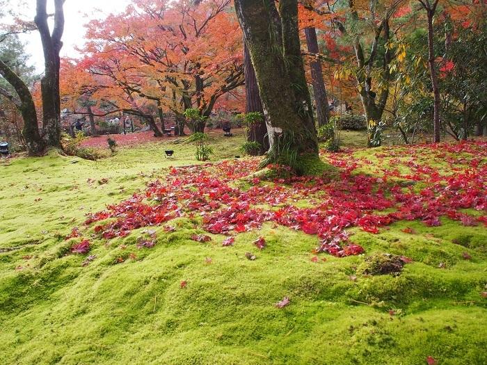 京都3_19_11_30