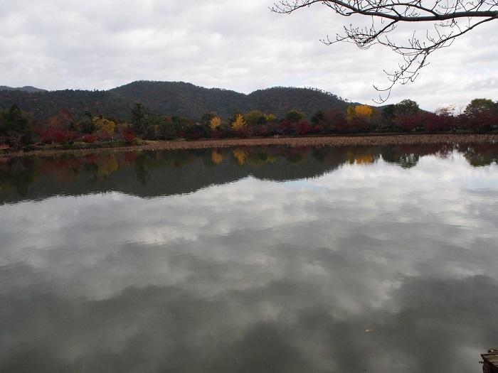 京都5_19_11_30