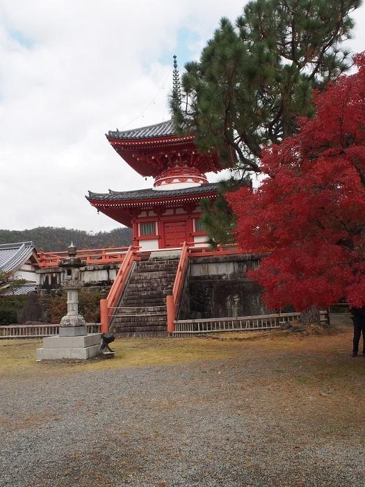 京都6_19_11_30