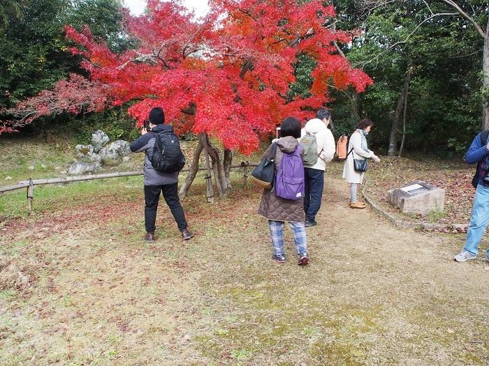 京都7_19_11_30
