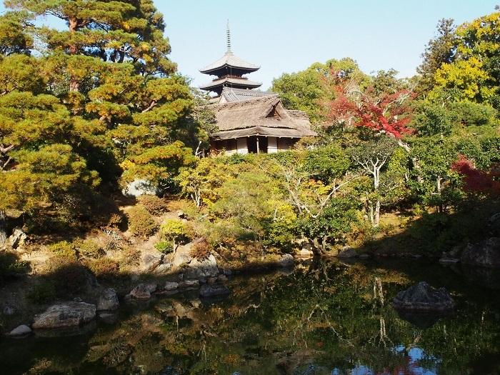 京都17_19_11_30