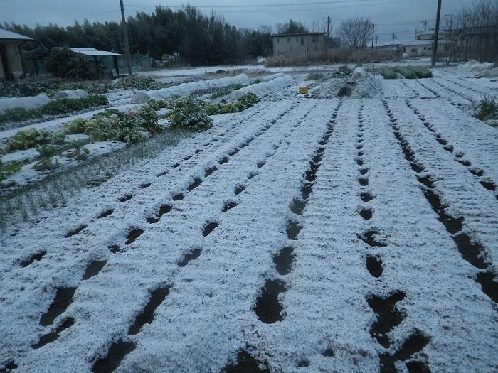 雪景色20_02_18
