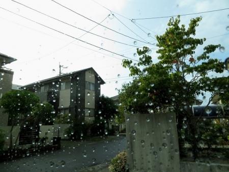 お天気 2019-09-05 022