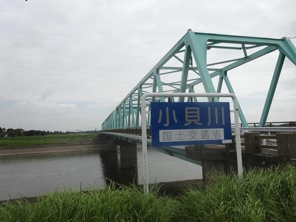 190914福岡堰 (6)