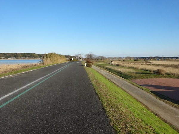 200101手賀沼お散歩 (4)