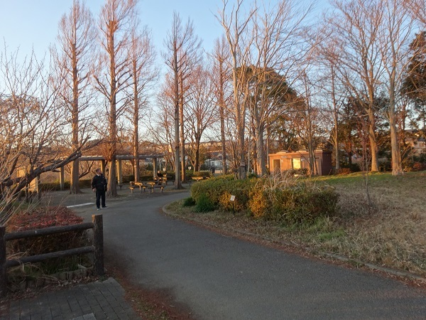 200101手賀沼お散歩 (6)