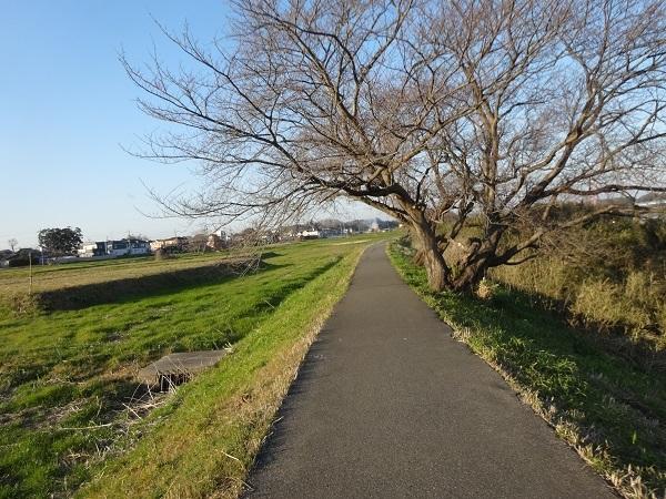 200111茂原 (11)