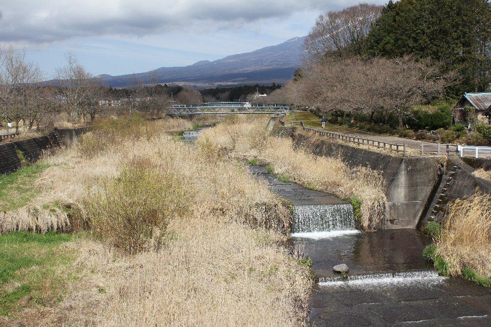 駒止橋(狩宿)からの潤井川