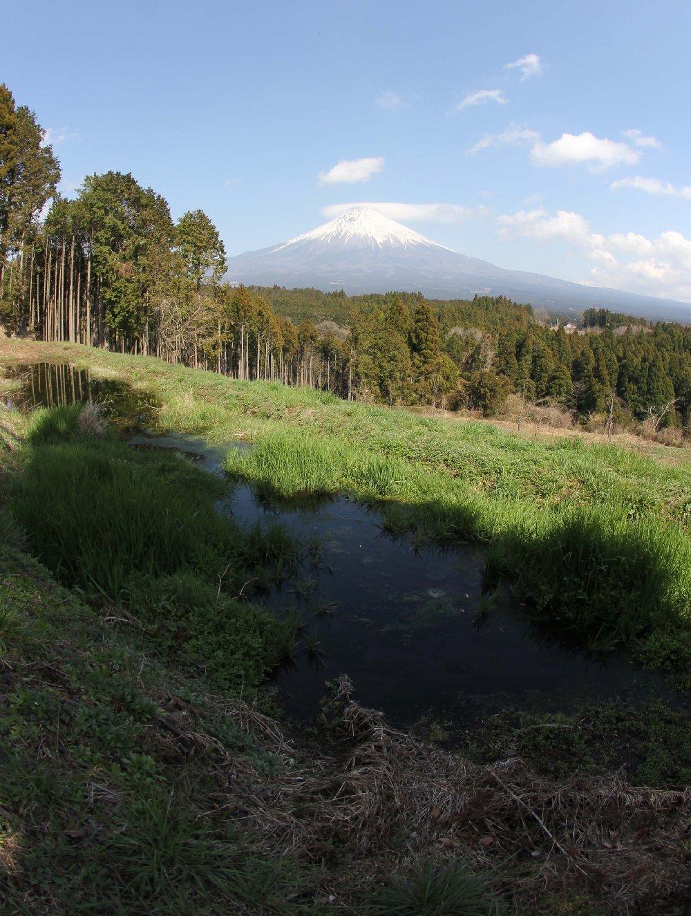 ミニ田貫湖
