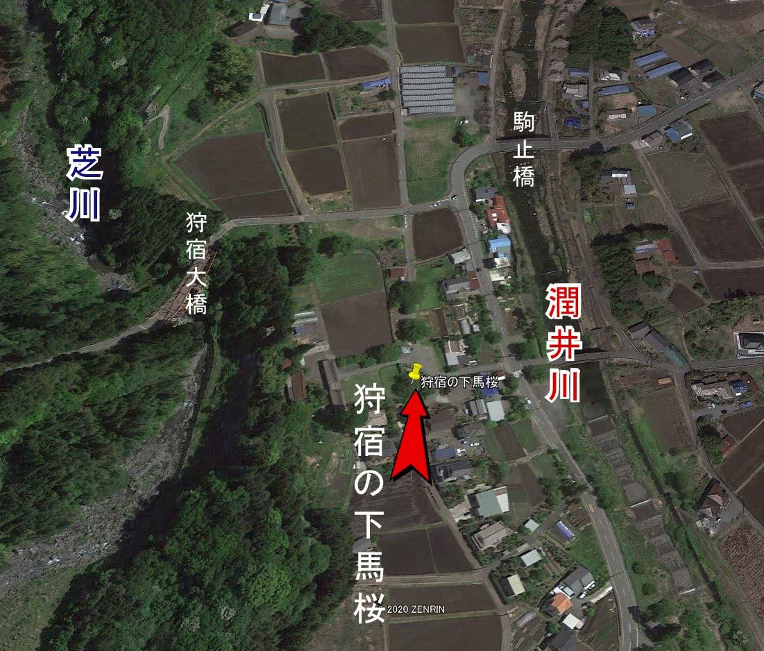 shibakawa3-1.jpg