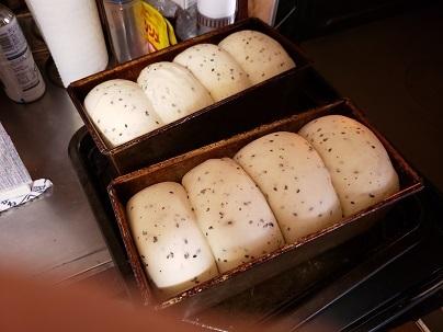 通常に戻った食パンー1