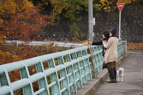7小安狭橋