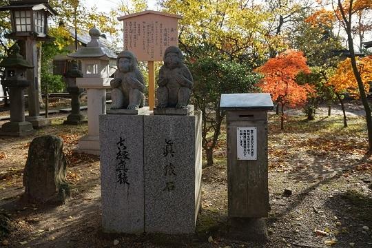 15日吉神社猿
