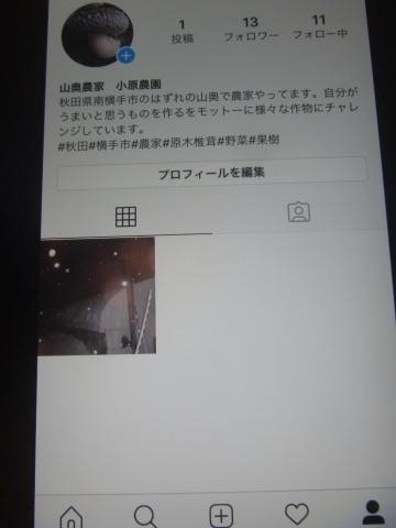 P1050196_縮小