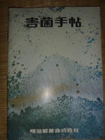 P1050273_縮小