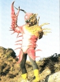 mukadetiger 002