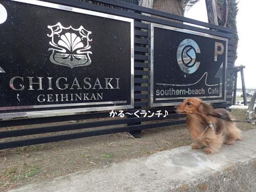 cafe-ahi2.jpg