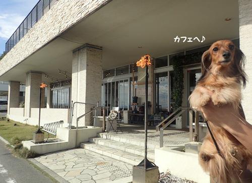 cafe-kamakura4.jpg