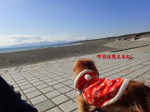 gyokou8.jpg