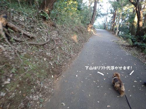 komuro8.jpg