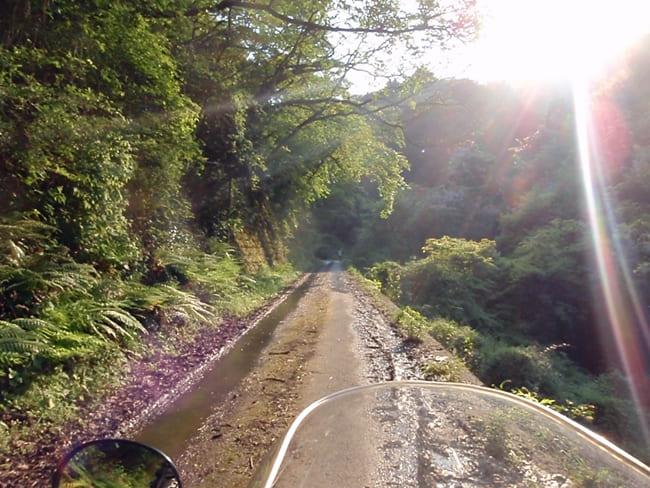 えひめ森林公園キャンプ場177271115_orgkai650圧縮 (1)