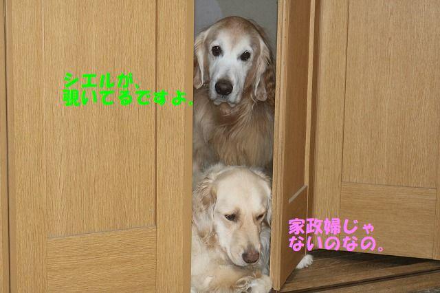 IMG_7408.jpg