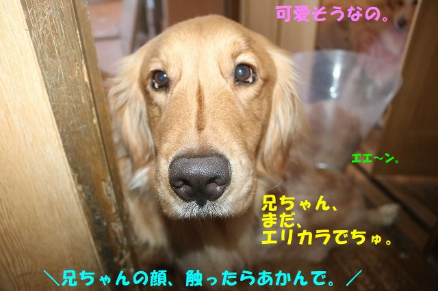 IMG_7552.jpg