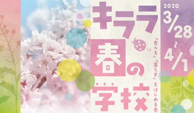 KIRARA_spring2020_0229.jpg