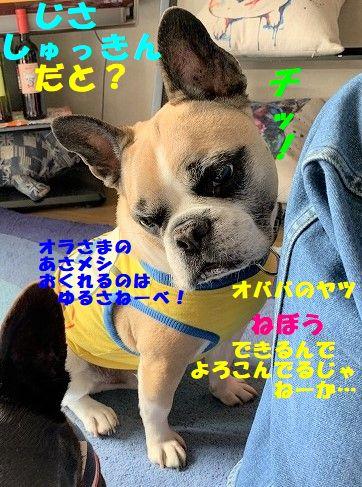 IMG_0116(1).jpg