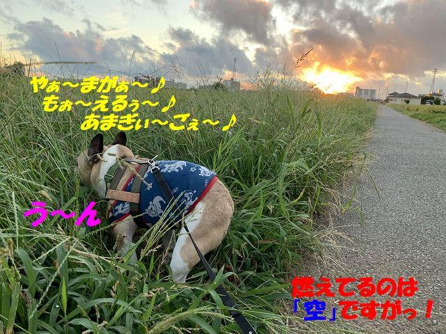 IMG_5144(1).jpg