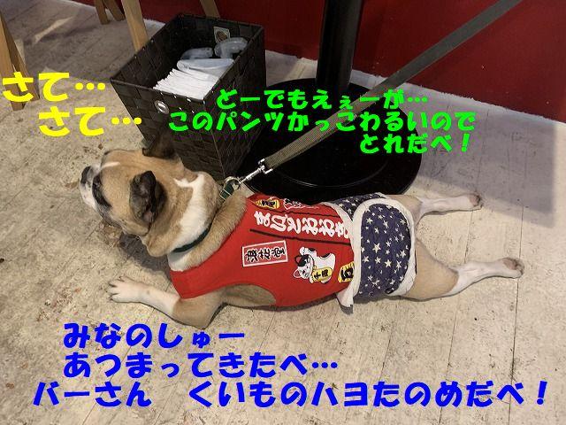 IMG_5455(1).jpg