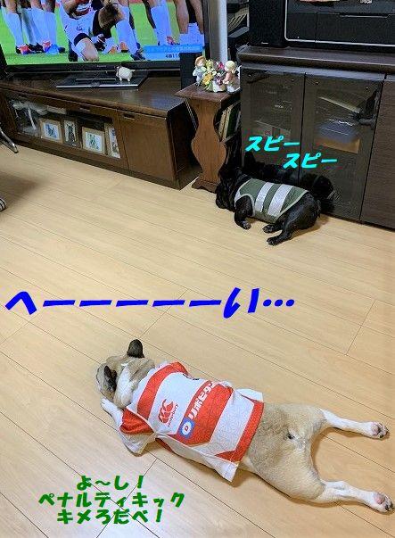 IMG_6090(1).jpg