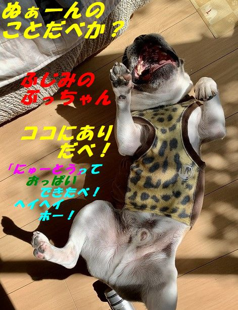 IMG_6415(Edited).jpg
