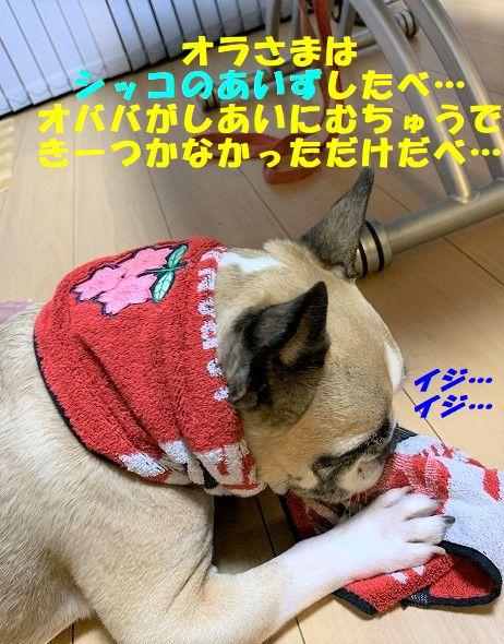 IMG_6693.jpg