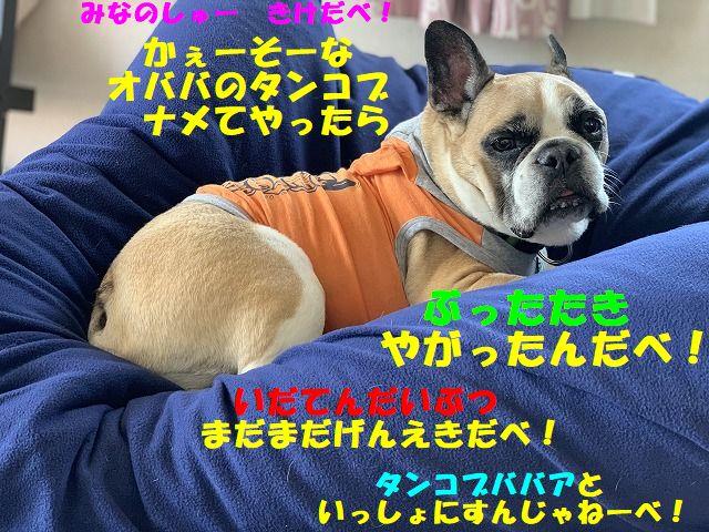 IMG_7094(Edited).jpg
