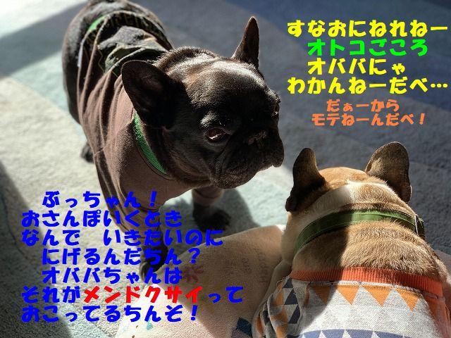 IMG_7449(Edited).jpg
