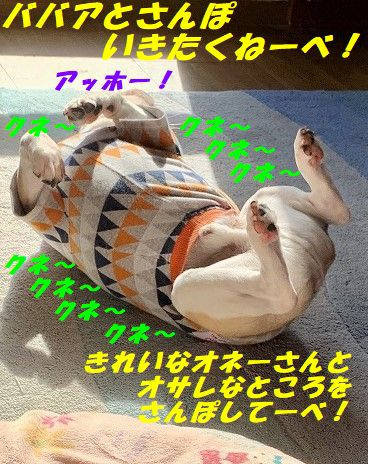 IMG_7450(Edited).jpg