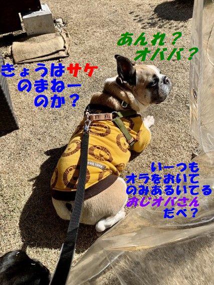 IMG_9437(Edited).jpg