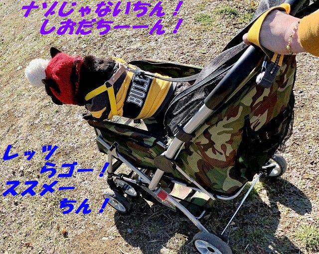 IMG_9459(Edited).jpg