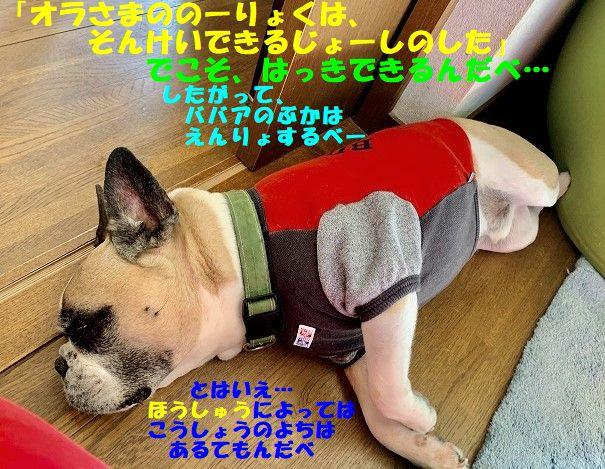 IMG_9906(Edited).jpg