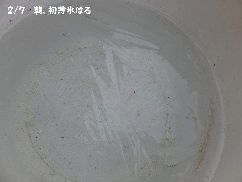 DSCF0665_1_20200207094434083.jpg