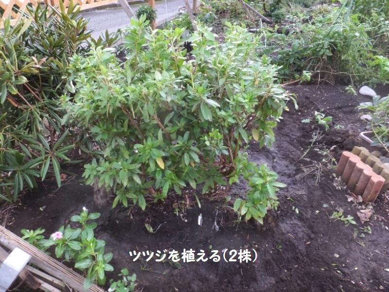 DSCF7978_1.jpg