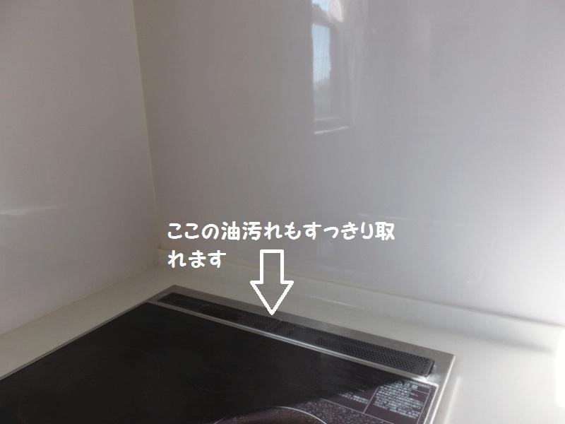 DSCF9993_1_201912271931100b2.jpg