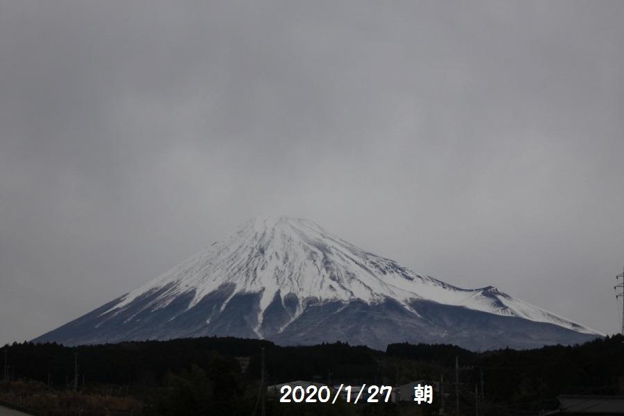 P1000497_1.jpg