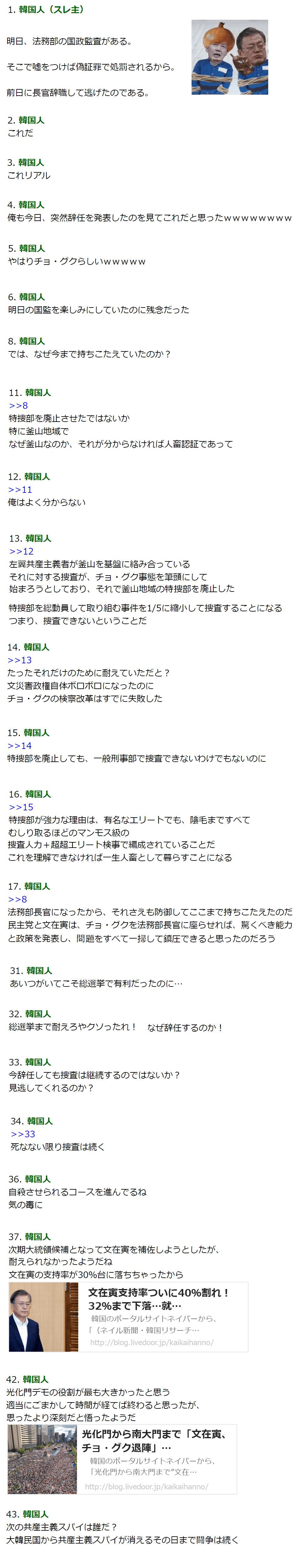 チョン「タマネギ男辞任の理由教える」2