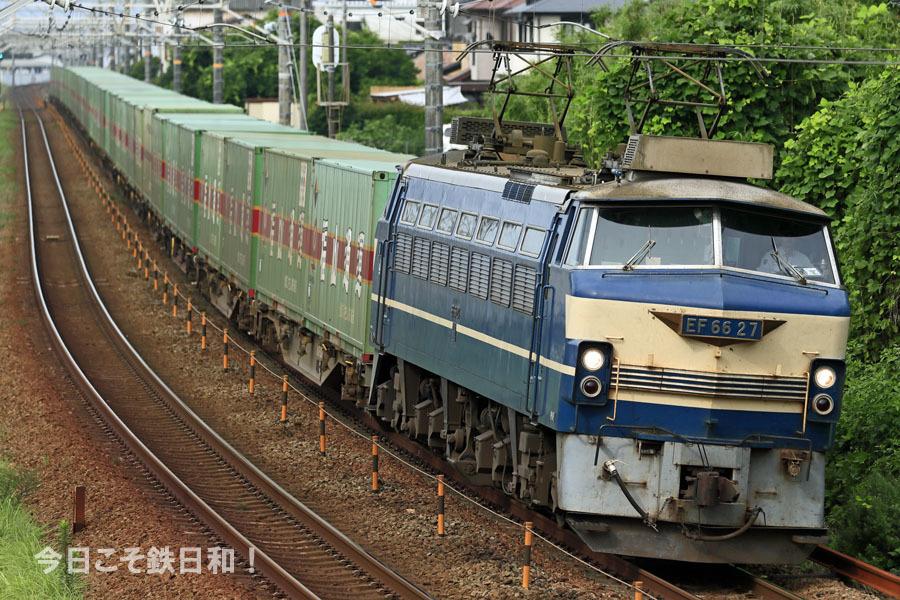 _MG12663.jpg