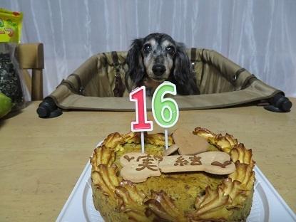 実結16歳!