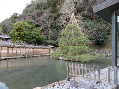 神楽殿横の池