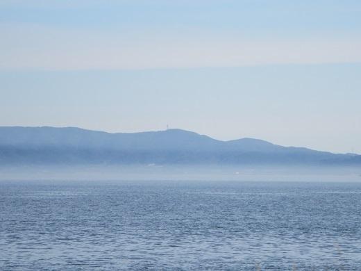 渥美半島はきりに煙って